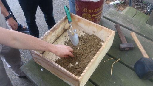 Pelz- und Sandbienen benötigen schluffiges Basismaterial, welches zu fertigen Nisthilfen verarbeitet wird. Hier entsteht eine Bienenwand als Modul für das große Wildbienenhotel.