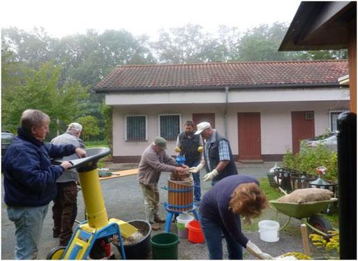 Mit einem Häckseler, aufgrund des fehlenden Musers, werden die Äpfel  vor dem Vereinsheim in Niederselters  zerkleinert.