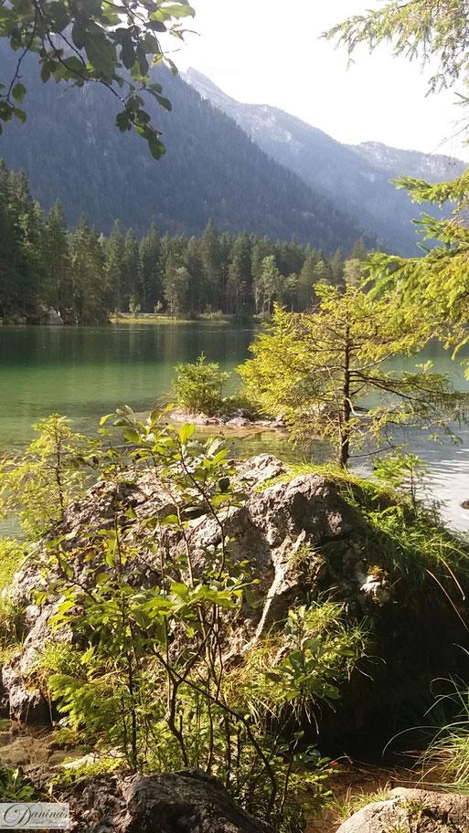 Erholsamste Naturelemente: Wasser, Berge & Wald - Der Einfachste Weg zu mehr Gesundheit und Wohlbefinden by Daninas-Kunst-Werkstatt.at
