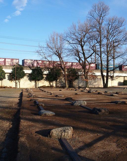 1月28日(2015) 武蔵国分尼寺跡と武蔵野線の貨物列車(国分寺市)