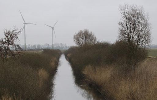 Grauwallkanal mit Ufergehölzen   Foto: Hans-J. Ropers