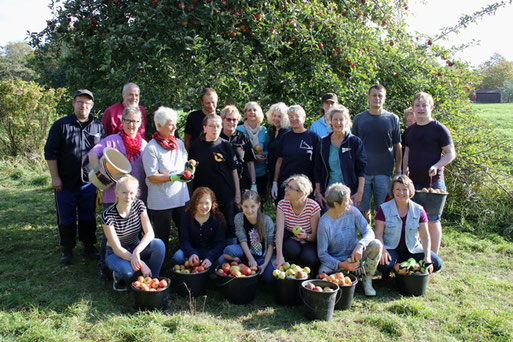 Apfelernte auf der Streuobstwiese    Foto: Hans-J. Ropers