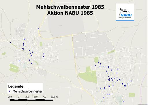 Mehlschwalbennester 1985