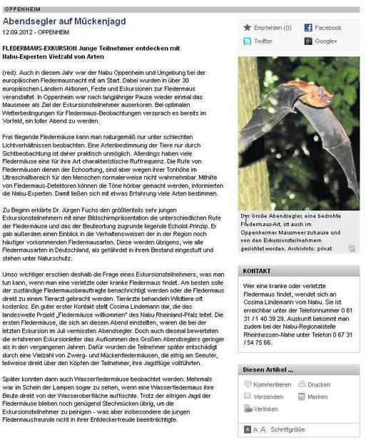Pressebericht zur Batnight in Oppenheim am 25.08.2012