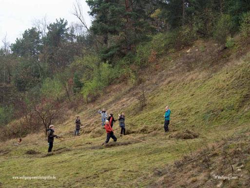 Alle Jahre wieder: Trockenrasenpflege in den Krielower Bergen. Immer im September/Oktober/November suchen wir dazu Mitstreiter. Die aktuellen Termine sind zu finden unter TERMINE oder Klick aufs Foto. Auf dem Bild Studentinnen der Uni Potsdam.
