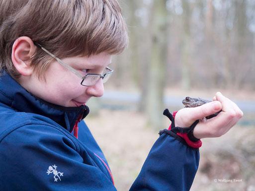 Marcus freut sich über die erste Erdkröte des Jahres - Foto: Wolfgang Ewert