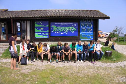 Auch Schulgruppen kommen gerne zum Graswarder (Photo Klaus Dürkop)