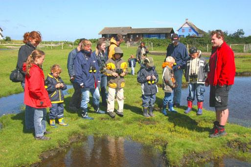 Besucher bei einer naturkundlichen Führung