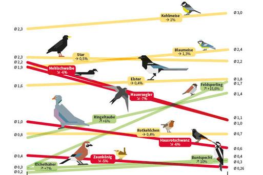 Gewinner und Verlierer der Stunde der Gartenvögel 2006 bis 2016.