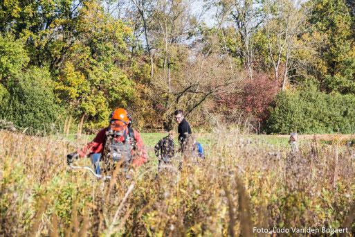 Feuchtwiesenmahd an den Papitzer Lachen. Foto: Ludo Van den Bogaert