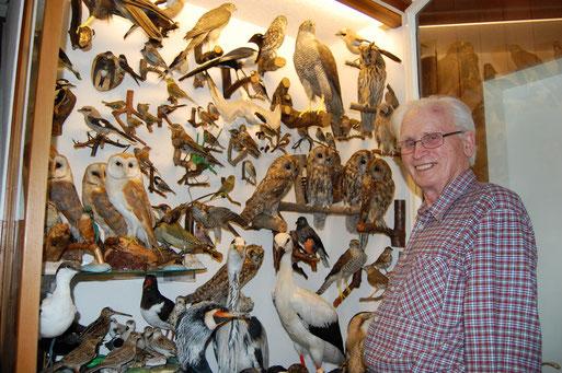 Der Ornithologe und hervorragende Präparator Wilhelm Purrhagen 2008 vor einem Teil seines umfassenden Lebenswerkes - regionale Tiere aus den 1950-1970er Jahren des alten Oldenburger Landes; Foto: Ludger Frye / NABU 2008