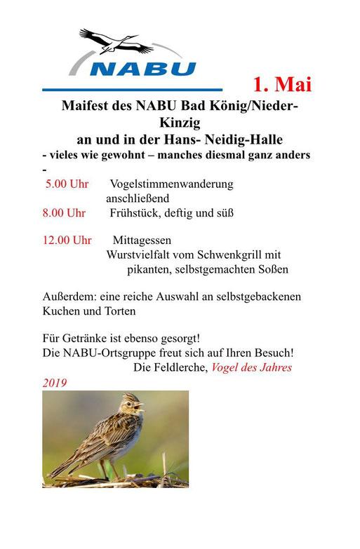 Odenwaldkreis Nachrichten