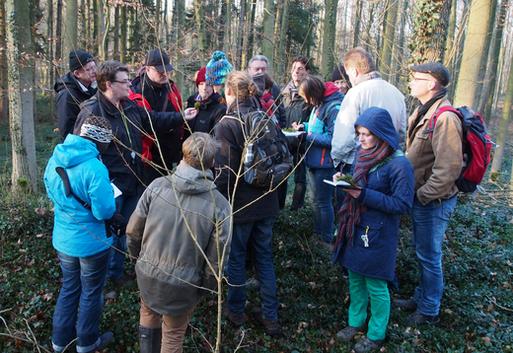 Carsten Schmidt leitete die Moosexkursion der AG Botanik Bild: Kerstin Gonschorrek