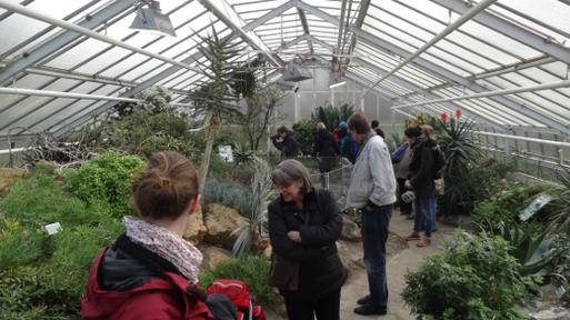 Ein ganzes Gewächshaus voll NABU-Botaniker  Bild: Thomas Hövelmann