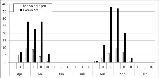 Phänologie des Grünschenkels, Tringa nebularia 2014 im Untersuchungsgebiet.