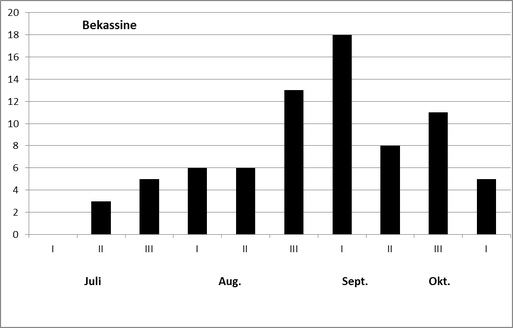 Phänologie der Bekassine, Gallinago gallinago nach der Beringung 2016