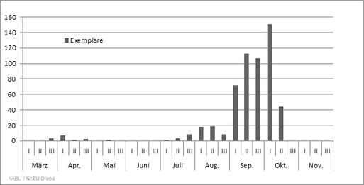 Phänologie der Bekassine, Gallinago gallinago 2015 im Untersuchungsgebiet