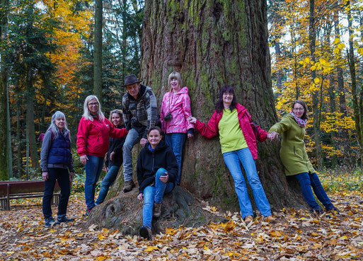 Gruppenbild mit Mammutbaum