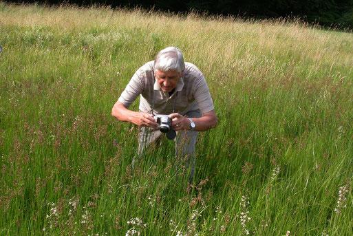 Hermann Schmack, der Vorsitzende der NABU-Gruppe Wetter, fotografiert die eher unscheinbare Sumpfstendelwurz.