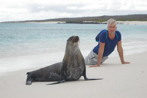 Española / Espanola - Kontakt zu Seelöwen am weissen Sandstrand