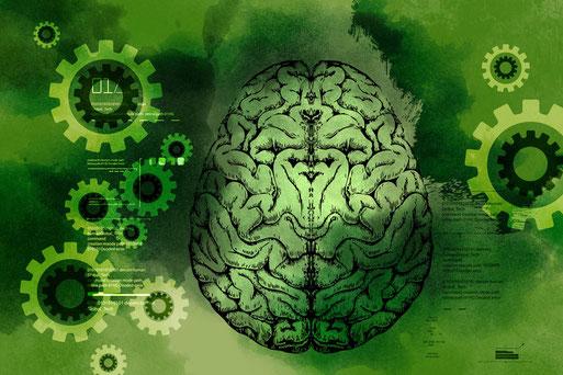 Psychologisches Wissen zum Thema psychische Störungen und zur Abgrenzung zwischen Neurosen und Psychosen