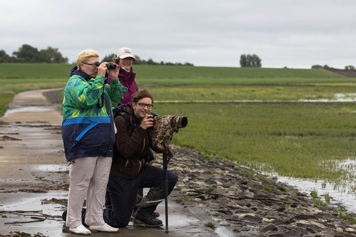 Wind und Regen zum Trotz...Bericht Silke Lorenz, Fotos Silke Lorenz und Jan Ole Weidert
