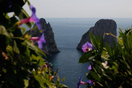 Felsen im Meer auf Capri, Italienreise