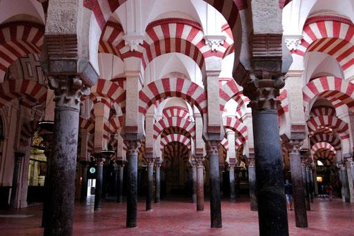 Visit the Mezquita of Cordoba, Andalusia