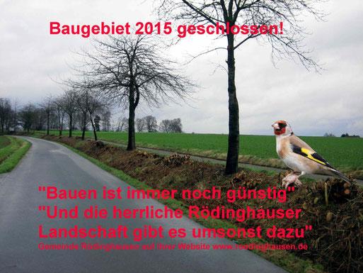 Horstfelder Straße, Rödinghausen - Hier baut sich im Frühjahr und in den nächsten Jahren kein Singvogel sein Nest!