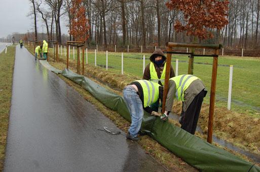 Aufbau eines mobilen Folien-Amphibienschutzzaunes; hier am Südring in Lohne-Zerhusen in Kooperation mit der Stadt Lohne; Foto: Ludger Frye