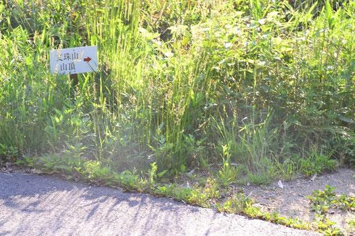 舗装してある林道の終点地点が文珠山と嘉納山の登山道を横切る