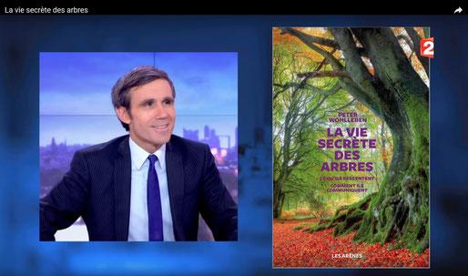 La vie secrète des arbres du Bager sur France 2 avec l'ACCOB à Oloron