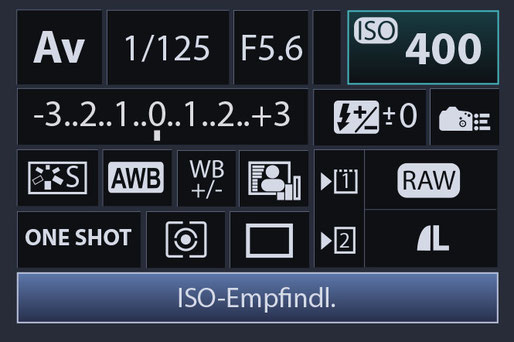 LCD Kameradisplay einer Spiegelreflexkamera Einstellungen Schnellmenüdisplay