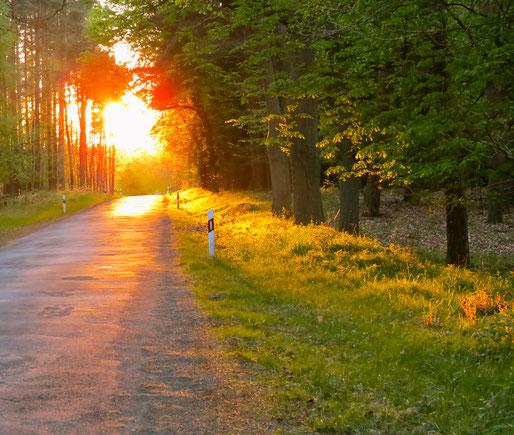 Pilgern Mecklenburg, Wandern, Urlaub, Ferienhaus