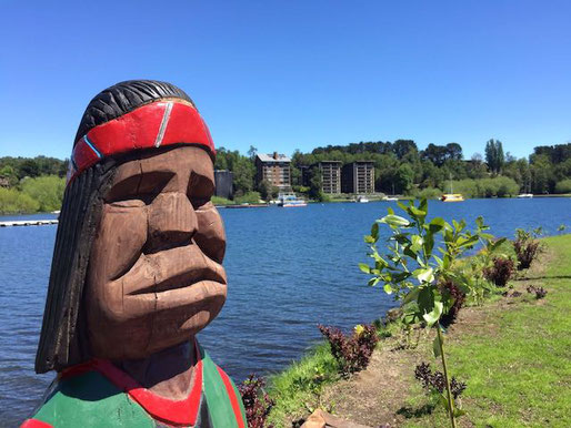 Learn Spanish in Pucon Culture Package Mapuche