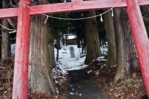 すぐそばの諏訪神社にその巨木のスギがあった。神社には土俵などもあり、なかなか立派な神社である。この田子の中心からさらに上郷方面に車で10分ほど入った所であるか゜由緒ある地域であったようだ。