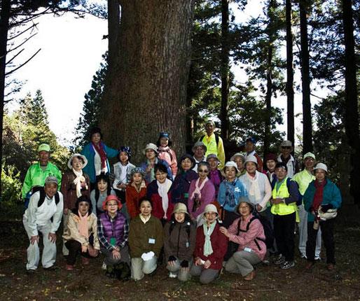 10月18日 NHK文化センター 巨木めぐり(会員 山本、参加者30名)