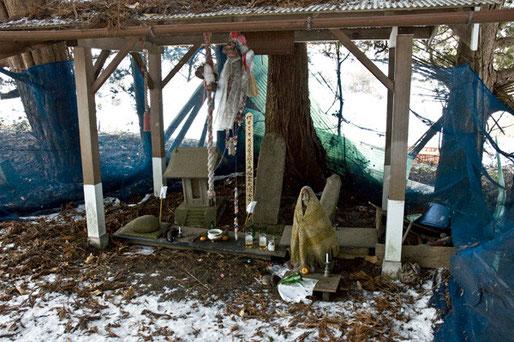 隣にはイチイ・スギがありその中にこういう祠などがありました