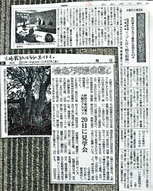 毎日新聞に東北巨木調査研究会として写真を提供しました。