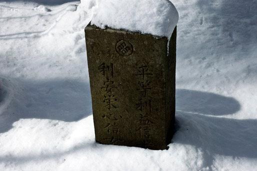 ここから山に少し入った所に古い墓があった。家紋は「丸に武田菱」などから源氏の流れをくむ武士なのだろうか。このトチの木はその人達が植え守られてきたのだろうか。