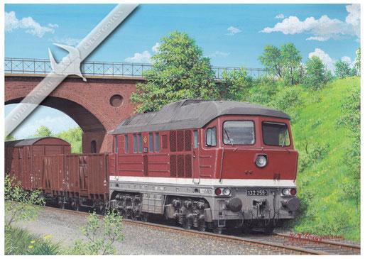 Diesellok DR 132 259 - 3 mit Güterzug bei Calbe / Saale 1985