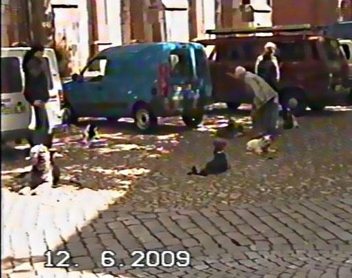 """"""" Bleib Platz """" in der Innenstadt, links Riese-Zottelfell"""