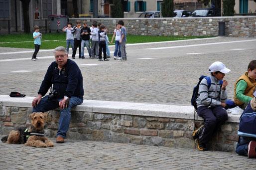 2011 in Italien muß der Hund im Auto angeschnallt sein, deshalb Brustgeschirr