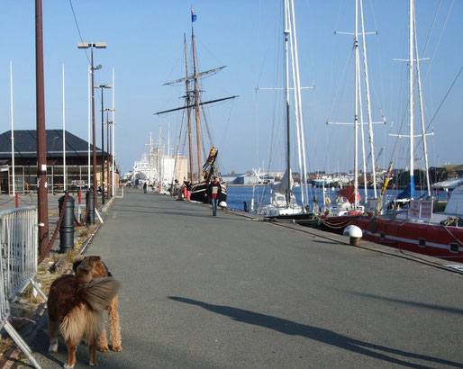 im Hafen von St.Malo