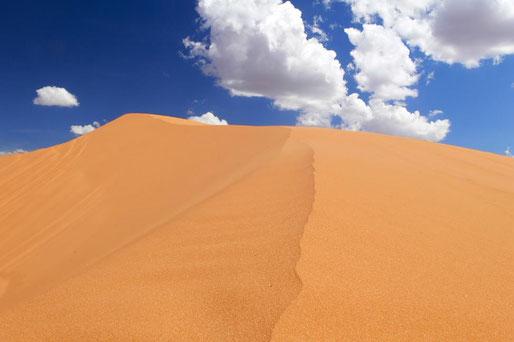 Berge aus Sand: Pink Sand Dunes NM - entgegen des Namens konnte ich keinen pinken Sand finden