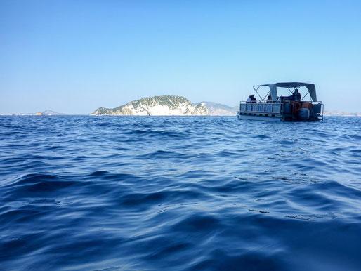 Griechenland Zakynthos Turtle Island