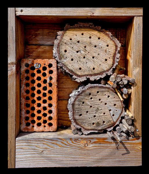 Ungeeignete Wildbienen-Nisthilfe