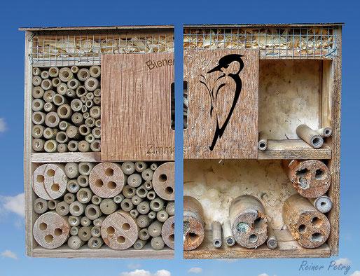 Spechtschaden Specht Buntspecht great woodpecker Dendrocopos major Nisthilfen Insektennisthilfen Insektenhotel Vogelschutz  Aufgehackte Halme  bee hotel insect hotel