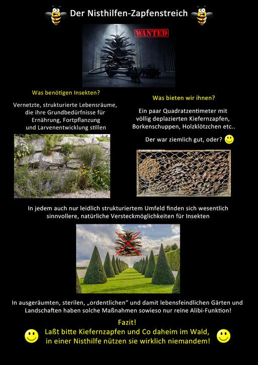 Insektenhotel Insektennisthilfe Nisthilfe Schautafel Kiefernzapfen poster pine cone insect hotel bee hotel