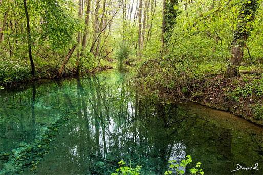Réserve Naturelle de la Petite Camargue Alsacienne